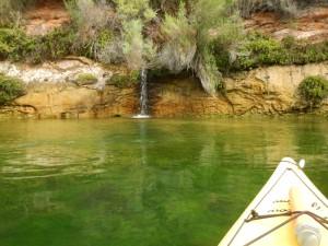 River-Kayak-Aug-25-2015-028